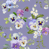 Pansy Flowers Background Stock Photos