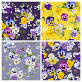 Pansy Flowers Background Set Illustration Libre de Droits