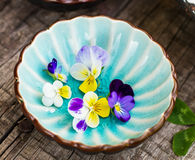 Pansy flowers in a blue cup on wooden background Royalty Free Stock Image