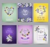 Pansy Flowers Card Set d'annata Immagini Stock