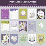 Pansy Flowers Card Set d'annata Immagine Stock Libera da Diritti