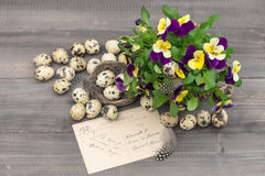 Pansy flowers, quail eggs and greeting card Stock Photography