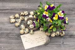 Pansy flowers, quail eggs and greeting card Royalty Free Stock Photo