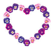 Pansy Heart Pink Stock Photography