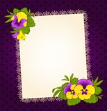 Pansy with lace ornaments Stock Image
