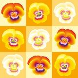 Pansy Orange stock illustratie