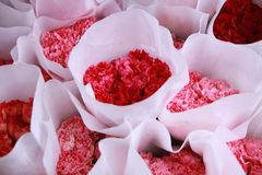 pansy pansies цветка красивейшей кровати предпосылки цветастый Стоковая Фотография RF