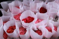 pansy pansies цветка красивейшей кровати предпосылки цветастый Стоковые Фото