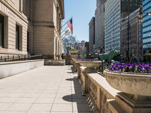 Pansy planters and lion sculpture outside Chicago Art Institute Stock Image
