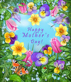 Pansy, tulip, daffodil, Iris, dragonfly, ladybug, butterfly, flowers heart frame. Greeting card. Happy mothers day card Stock Images