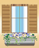 Pansy window box Royalty Free Stock Images