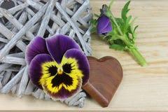 Pansy z drewnianym sercem Fotografia Royalty Free