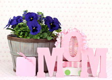 Pansys and gifts for Mom Stock Photography