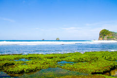 pantai parang dowo royalty free stock image