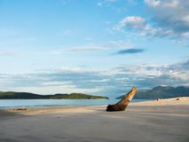 Pantai Tengah Beach in Langkawi, Malaysia in the Morning Light Stock Photos