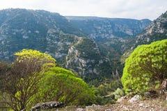 Pantalica的峡谷 库存照片