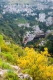 Pantalica的峡谷 库存图片