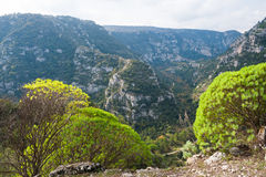 Pantalica's canyons. One of the canyons in the archeological site of Pantalica in Sicily, view from above stock photos