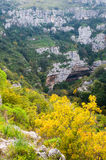 Pantalica's canyons. One of the canyons in the archeological site of Pantalica in Sicily, view from above stock image