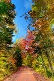 Pantalla a color de los otoños Foto de archivo libre de regalías