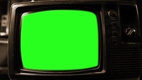 Pantalla del verde del vintage TV Estética de los años 80 Tono de la sepia