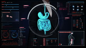 Pantalla digital conmovedora de la empresaria, cuerpo de enfoque que explora los órganos internos, sistema de la digestión en ind ilustración del vector