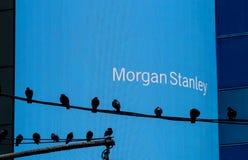 Pantalla electrónica del ` s de Mogran Stanley Fotos de archivo libres de regalías