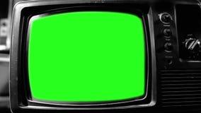 Pantalla vieja del verde de los años 80 TV Estética de los años 80 Tono blanco y negro Enfoque adentro rápidamente