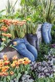 Pantaloni lunghi utilizzati come piantatrici con la sansevieria, i tulipani e le varie piante del fogliame immagine stock libera da diritti