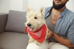 Pantaloni a vita bassa dell'uomo con il cane bianco Fotografia Stock