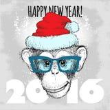 Pantaloni a vita bassa della scimmia dello scimpanzè con i vetri ed il cappello blu di Natale Immagine Stock