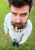 Pantaloni a vita bassa sul supporto serio su erba, fine del fronte su, defocused Concetto naturale di bellezza L'uomo con la barb Fotografia Stock Libera da Diritti
