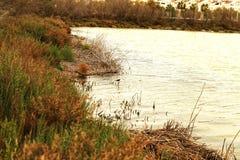 Pantanais de Santa Pola fotografia de stock royalty free