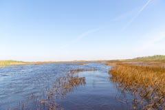 Pantanal de Florida, passeio do Airboat no parque nacional dos marismas nos EUA Lugar popular para turistas Fotografia de Stock Royalty Free