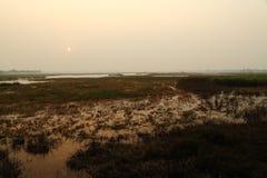 Pantanal no inverno Imagens de Stock