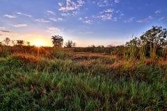 Bonito Brazil sunrise. Sunride in Pantanal, Bonito, Mato Grosso do Sul, Brazil Royalty Free Stock Photos