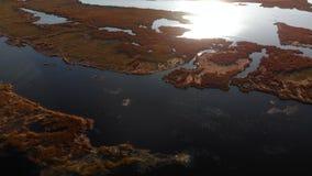 Pantano aéreo en el río Lielupe en Varnukrogs - opinión superior de la puesta del sol de oro de la hora desde arriba de - tiro de almacen de metraje de vídeo