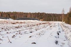 Pantano de turba drenado cubierto con nieve y la máquina industrial en invierno imagen de archivo