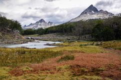 Pantano de turba en el parque cerca de Ushuaia, Paragonia, la Argentina de Tierra del Fuego Imagen de archivo