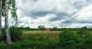 Pantano del arbolado Se nubla el cielo Prado Foto de archivo libre de regalías