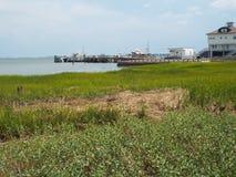 Pantano en Charleston Fotos de archivo
