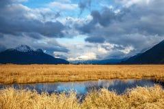 Pantano iluminado por el sol con las montañas en el fondo Foto de archivo libre de regalías