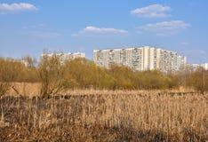 Pantano urbano, vista del área el dormir del parque foto de archivo