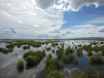 Pantanos de Ruoergai, China Foto de archivo libre de regalías