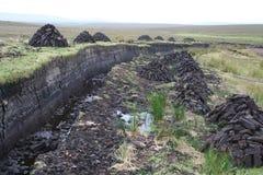 Pantanos de turba Foto de archivo libre de regalías