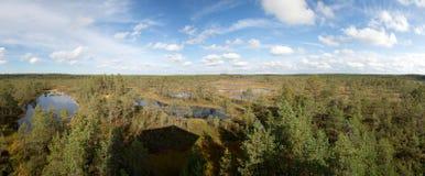 Pantanos de Viru Imagen de archivo libre de regalías