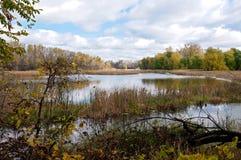 Pantanos y bosques del refugio en Eagan Foto de archivo