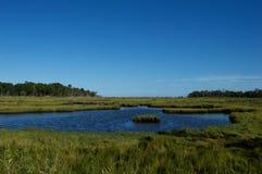 Pantanos y humedales de la orilla del jersey Fotos de archivo libres de regalías