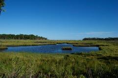 Pantanos y humedales de la orilla del jersey Imagen de archivo libre de regalías