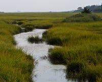 Pantanos y humedales de la orilla del jersey Fotos de archivo